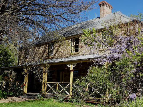 Tree Branches Over Your Roof Danger Happy Tree